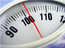 perte de poids et resveratrol